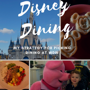 Strategy for Picking Dining at Walt Disney World